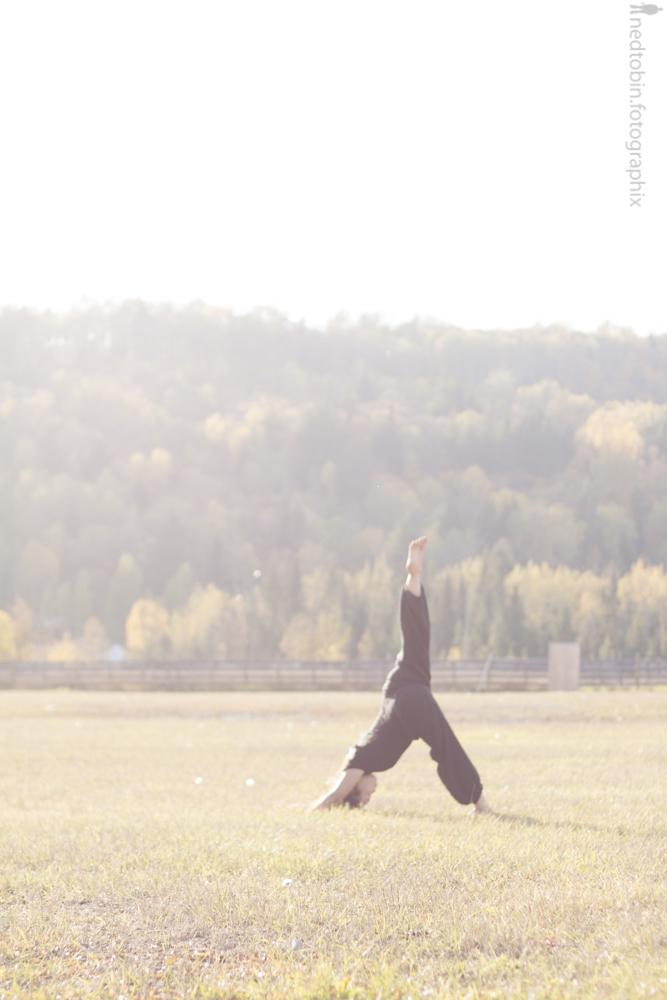 Downward facing dog right leg up | Adho Mukha Svanasana plus right | Yoga | Sufey