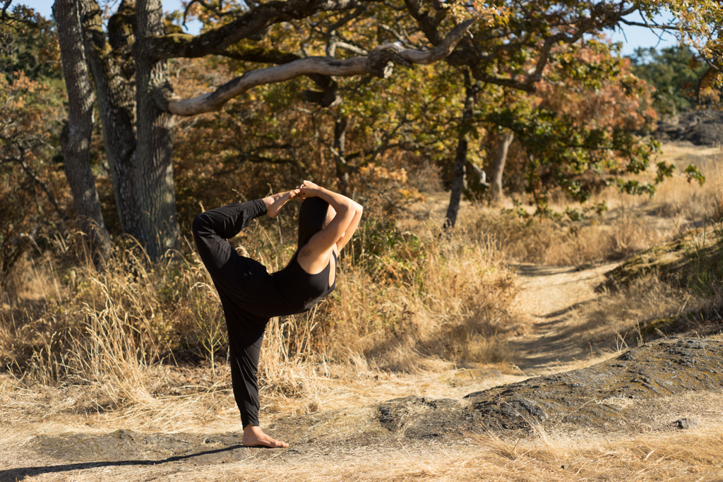 Lord of the Dance Pose II | Natarajasana II | Yoga | Sufey